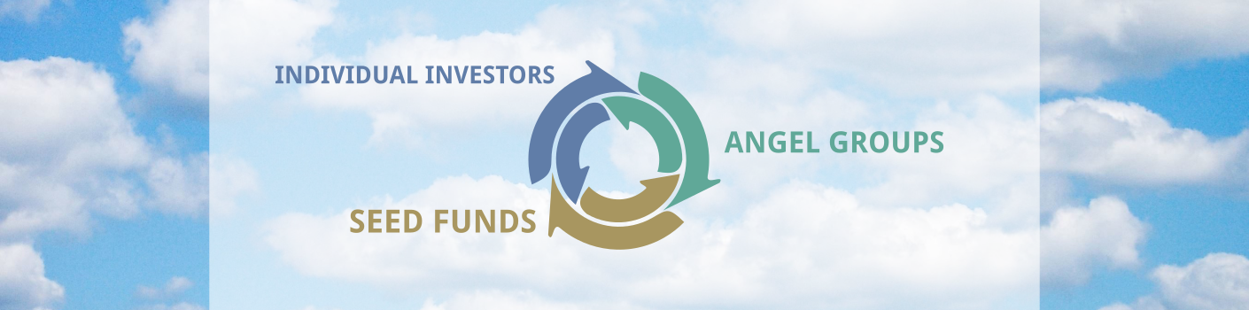 infographic featuring individual investors, angel groups, and seed funds as equal sections of a brain
